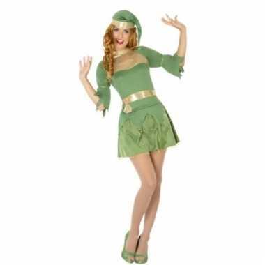Kerst groen elfen verkleedverkleedjurkje